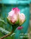 6_juin_2012
