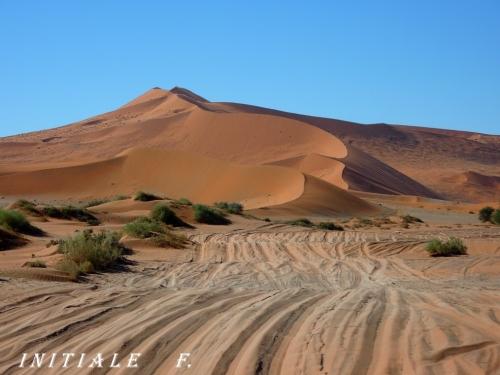 dune_rouge