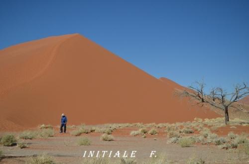 dunes_rouges (1)