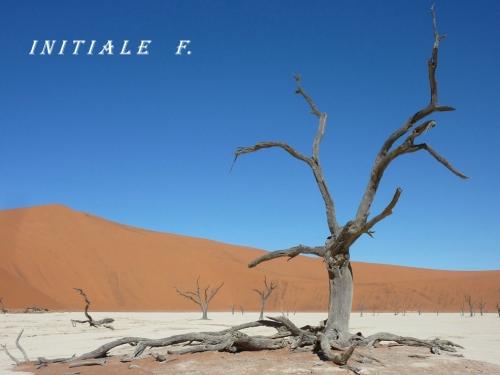 dunes_rouges (7)