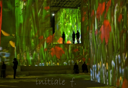 carrieres_de_lumieres (8)