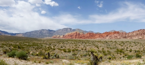 Red_Rock Canyon B2