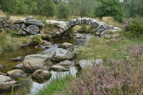 pont_de_senoueix