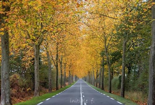 automne10